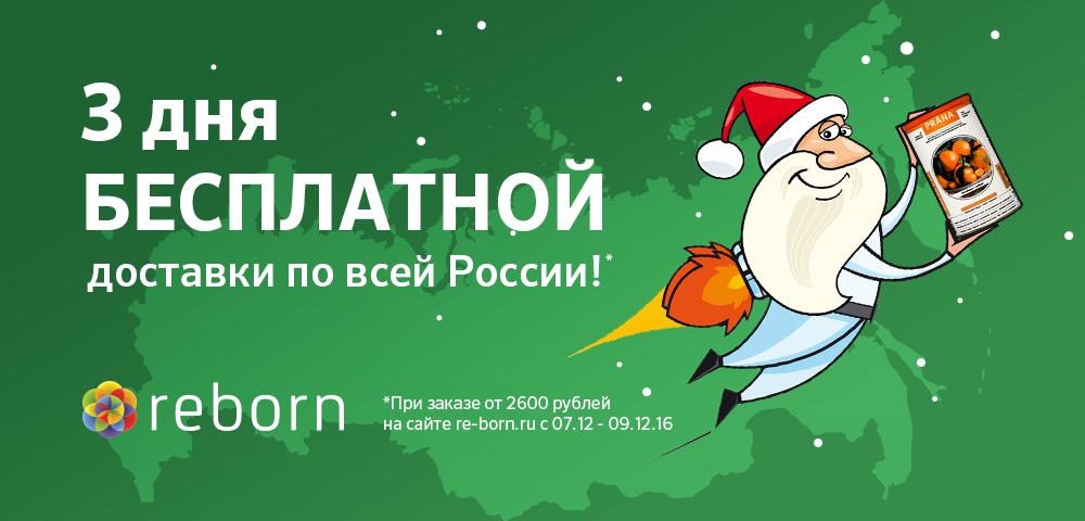 1000x480_besplatno-po-rossiidekabr-1